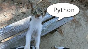「Python の Newspaper3k ライブラリ」のイメージ