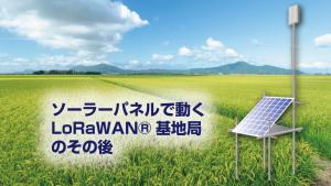「ソーラーパネルで動くLoRaWAN®基地局のその後」のイメージ