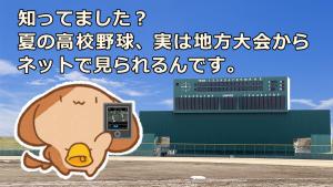 「知ってました?夏の高校野球、実は地方大会からネットで見られるんです。」のイメージ